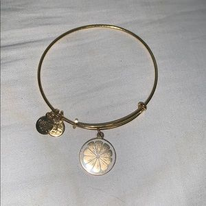 Alex and Ani Grapefruit Bracelet
